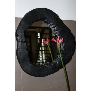 Boomstamspiegel zwart