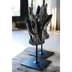 Versteend fossiel op metalen voet