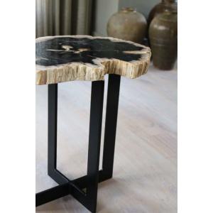 Salontafel versteend hout