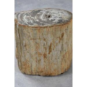 Bijzettafel versteend hout
