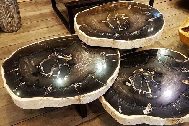 Versteend hout salontafels
