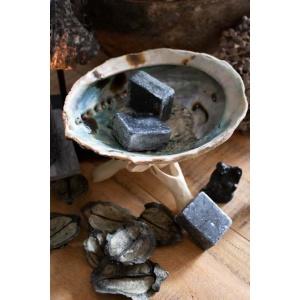Abalone schelp op voet