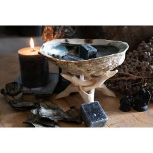 Abalone schelp op voet sfeer